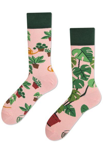 Plant Lover Regular -sukat 1 pr